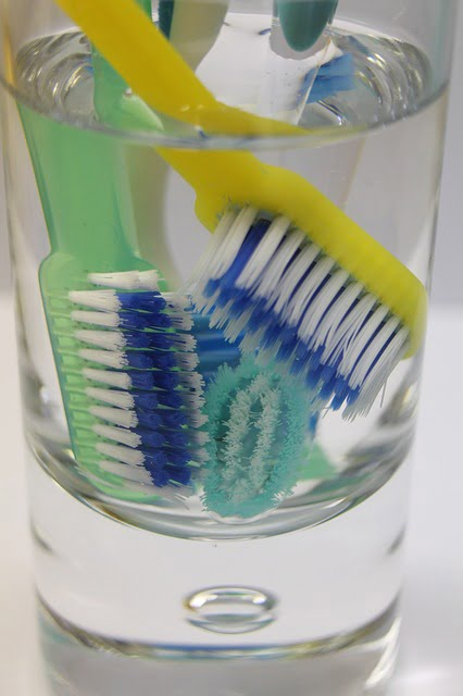 The Fundamentals of Toothbrush Care