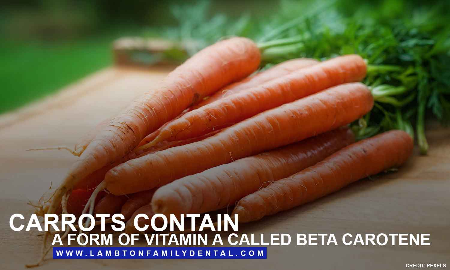 Carrots contain a form of vitamin A called beta carotene
