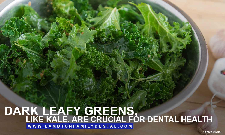 Dark-leafy-greens-like-kale