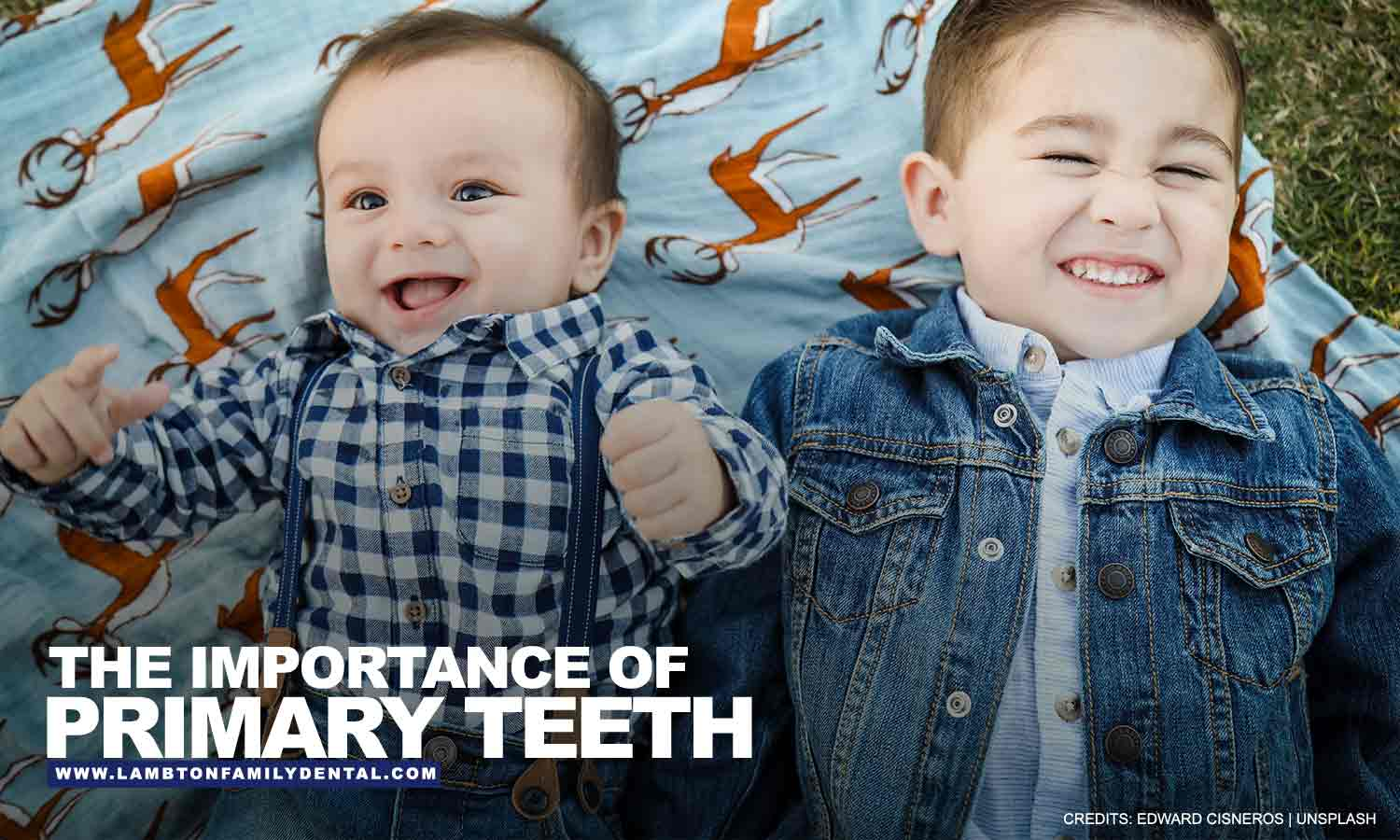 Importance of Primary Teeth